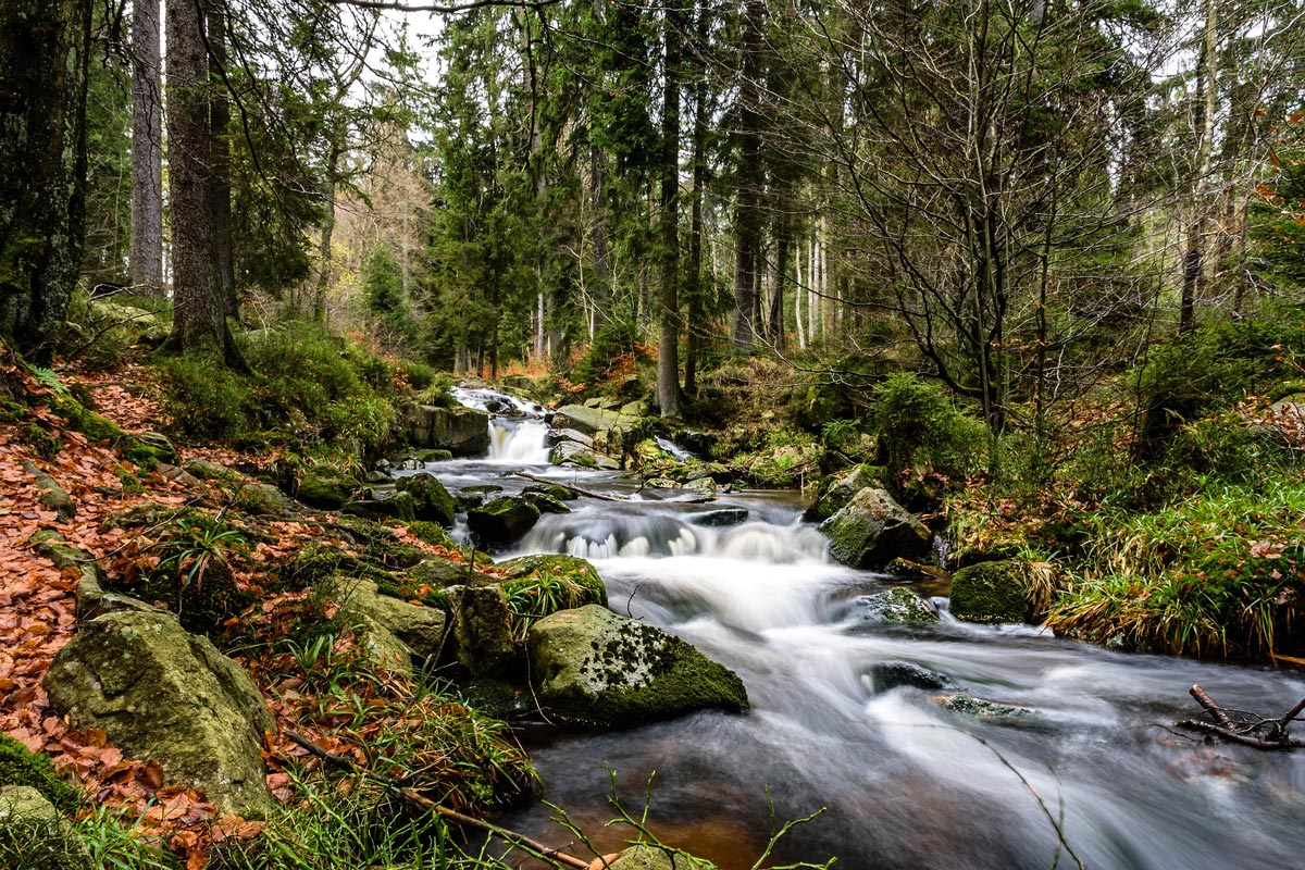 Waterfall in the Harz Mountains